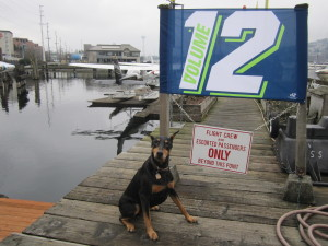 Seattle Seahawks - home of the 12th Man! (or Dog)